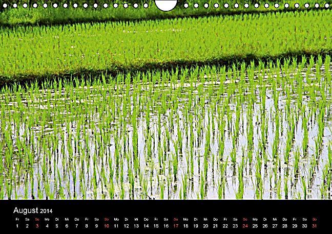 Bali (Wandkalender 2014 DIN A4 quer) - Produktdetailbild 8