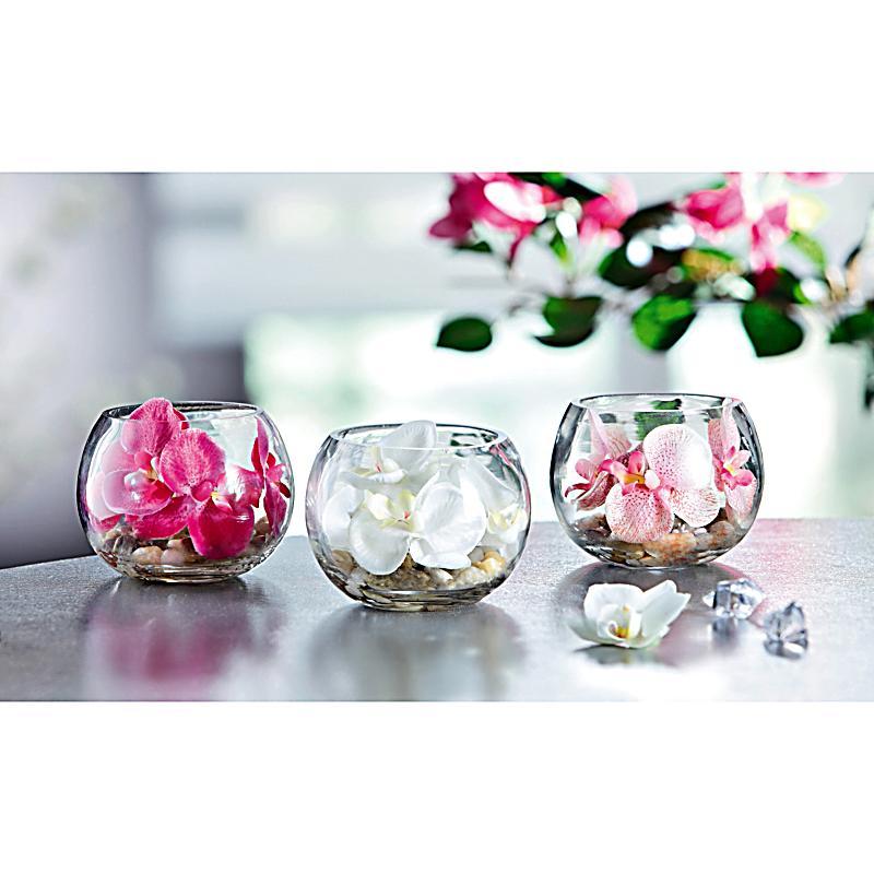 Redirecting to artikel deko trends deko orchidee im glas for Deko bestellen