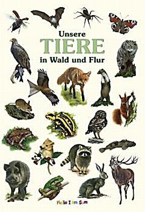 Unsere tiere in wald und flur bilderbuch ab 3