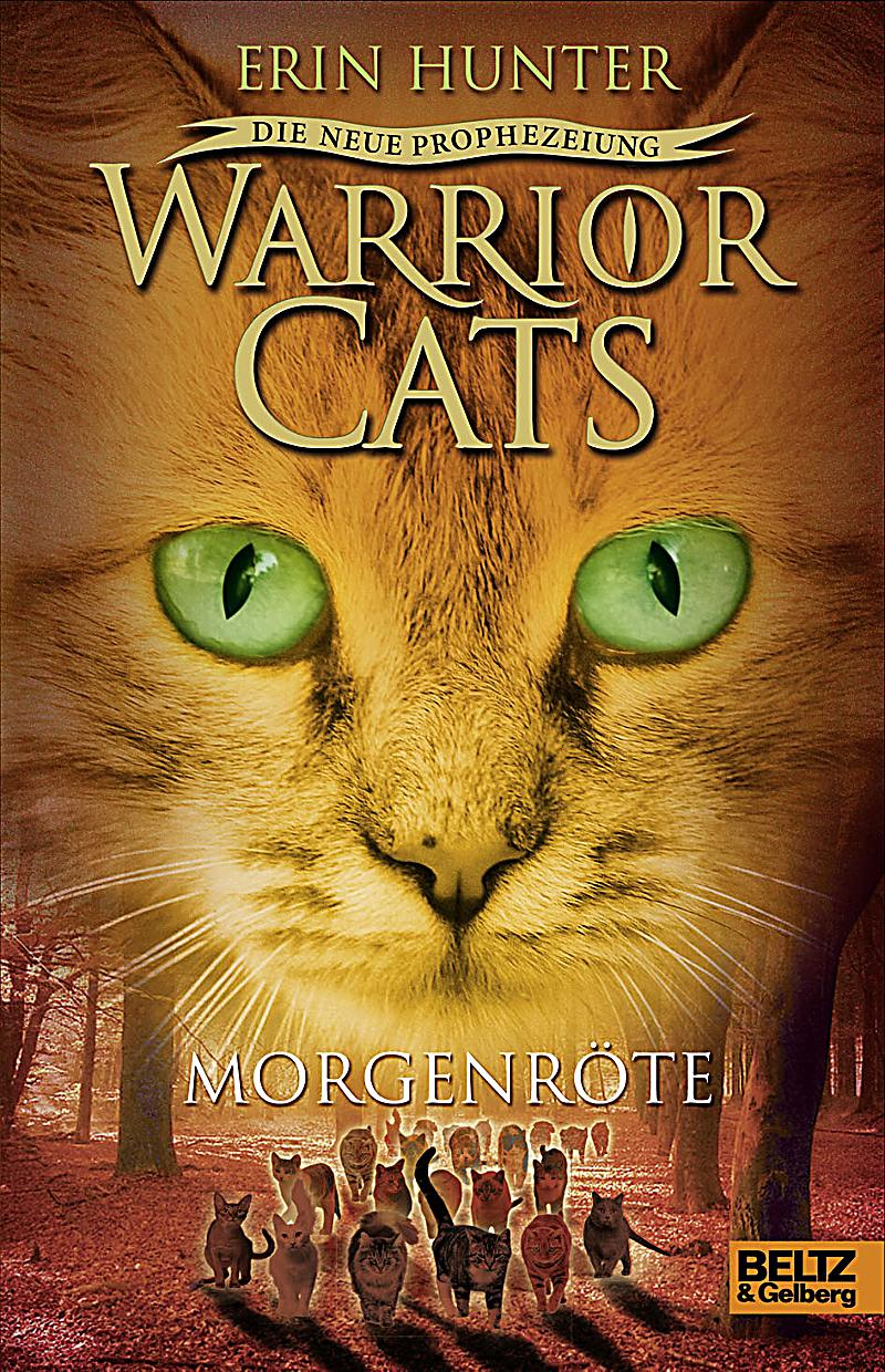 Images Of The Warrior Cats