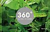 360 Grad - Die Welt in Farben