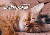 """Aufstellkalender """"Katzenpoesie"""" 2015"""