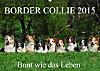 Border Collie 2015 (Wandkalender 2015 DIN A2 quer)