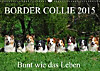 Border Collie 2015 (Wandkalender 2015 DIN A3 quer)