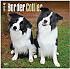 Border Collies, Broschürenkalender 2015
