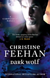 Dark Wolf (eBook)