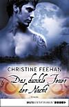 Das dunkle Feuer der Nacht (eBook)