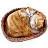 Deko-Katzen im Körbchen