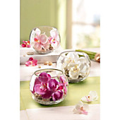Deko-Orchidee im Glas, 3er-Set