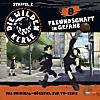 Die Wilden Kerle - Freundschaft, Audio-CD
