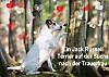 Ein Jack Russell Terrier auf der Suche nach der Traumfrau (Wandkalender 2015 DIN A2 quer)