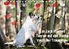 Ein Jack Russell Terrier auf der Suche nach der Traumfrau (Tischkalender 2015 DIN A5 quer)