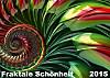 Fraktale Schönheit 2015 (Wandkalender 2015 DIN A2 quer)