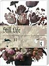 Geschenkpapier - Still Life