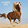 Horses 2015