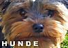 Hunde / Geburtstagskalender (Wandkalender 2015 DIN A3 quer)