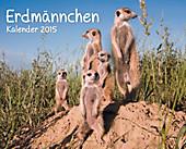 """Kalender-Paket """"Erdmännchen"""" 2015, 6tlg."""