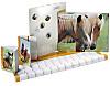 "Kalender-Paket ""Pferde"" 2015, 6tlg."