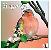 Kalender Singvögel 2015 - Broschur