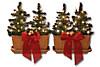 Lichter-Weihnachtsbäumchen, 4er-Set