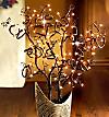 Lichterbaum Korkenzieherhasel