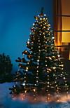 Lichterkette Baumbeleuchtung für Außen