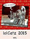 lolCatz 2015