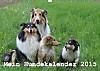 Mein Hundekalender 2015 (Wandkalender 2015 DIN A3 quer)