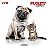 Puglets 2015