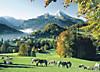 Ravensburger Puzzle Berchtesgaden Watzmann, 1000 Teile