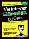 The Internet GigaBook For Dummies (eBook)