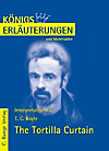 The Tortilla Curtain von T.C. Boyle. Textanalyse und Interpretation. (eBook)