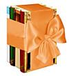Überraschungs-Paket Unterhaltungsromane